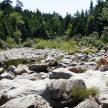 Moosehorne trail in Fundy NP